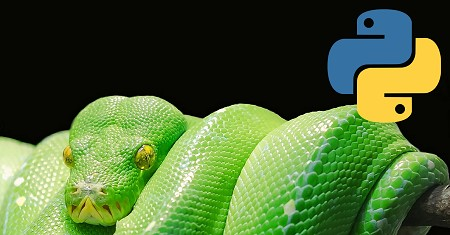 Illustration of Python Programming Language