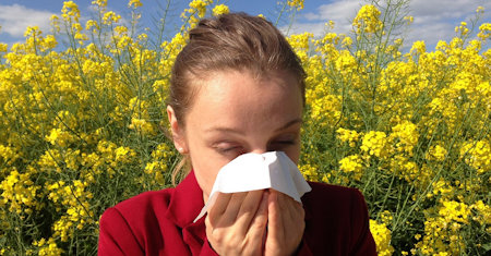 Illustration of Allergies