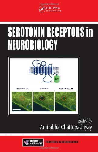 Large book cover: Serotonin Receptors in Neurobiology