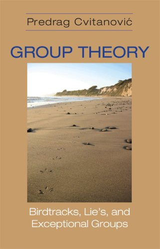 Large book cover: Group Theory: Birdtracks, Lie's, and Exceptional Groups
