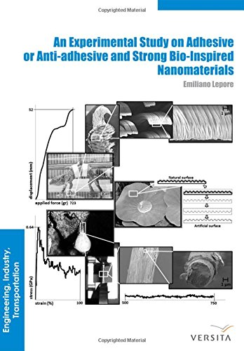 Large book cover: An Experimental Study on Adhesive or Anti-adhesive, Bio-inspired Experimental Nanomaterials