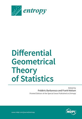 Large book cover: Differential Geometrical Theory of Statistics