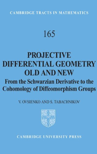Large book cover: Projective Differential Geometry Old and New