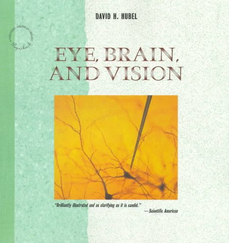Large book cover: Eye, Brain, and Vision