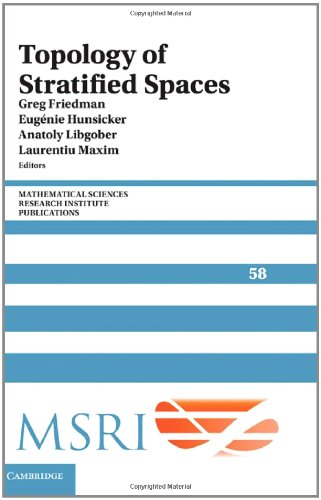 Large book cover: Topology of Stratified Spaces