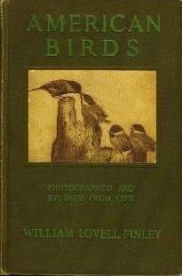 Large book cover: American Birds