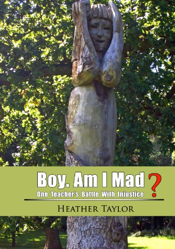 Large book cover: Boy. Am I Mad?