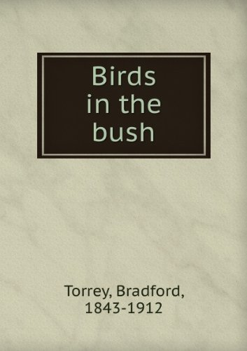 Large book cover: Birds in the Bush