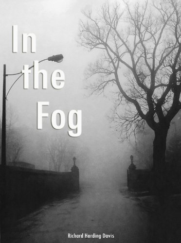 Large book cover: In the Fog