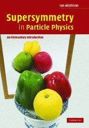Large book cover: Supersymmetry in Particle Physics: An Elementary Introduction