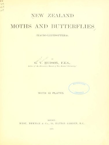Large book cover: New Zealand Moths and Butterflies