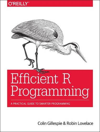 Large book cover: Efficient R Programming